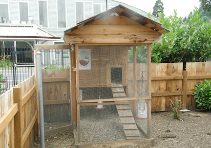Townhouse chicken coop