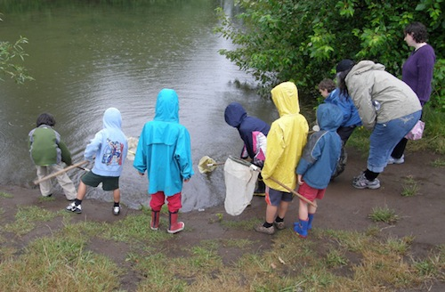 Group of kids pond dipping for eggs and larvae