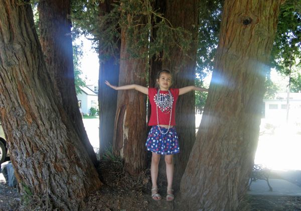 Anna and a big tree