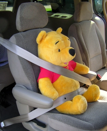 Pooh Bear in our van.