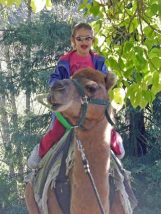Anna rides a camel.