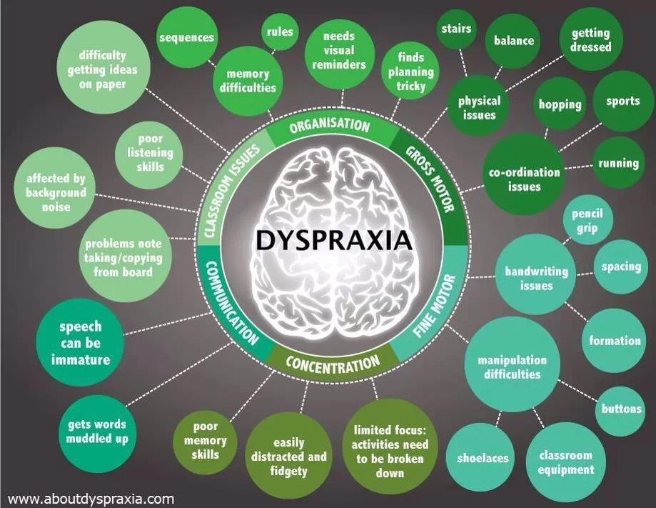 Apraxia And Dyspraxia Fatherhood Etc