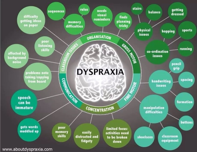 Dyspraxia chart