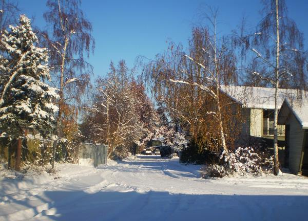 snow-covered lot