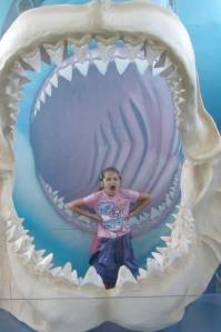 Anna and megalodon jaws