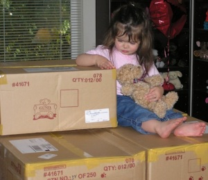 Anna and cleft bear boxes