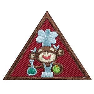 Home Scientist Badge