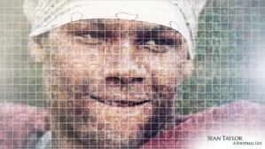Sean Taylor Mosaic
