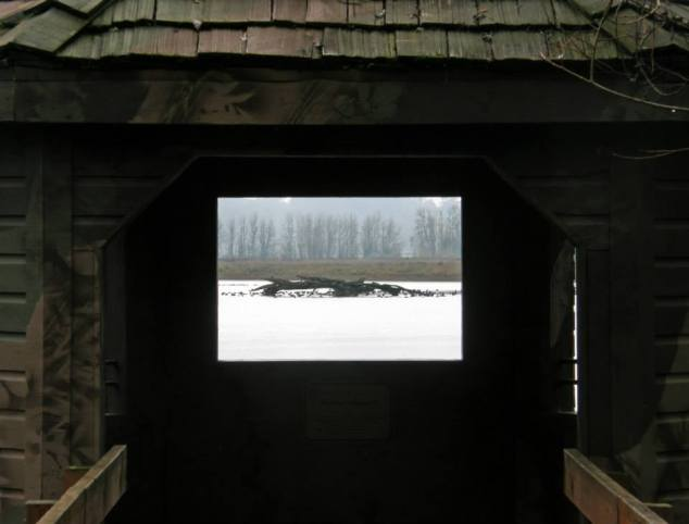 Observation blind overlooking Cabell Marsh