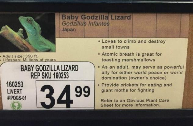 Oh no, baby GODZILLA!